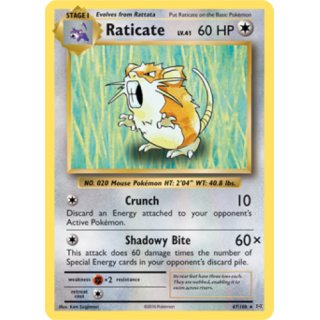 Raticate 67/108 Evolutions EN